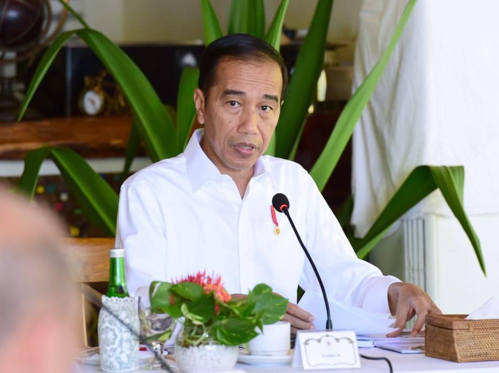 Jokowi Minta Prabowo Kembangkan Alutsista yang Serba Digital