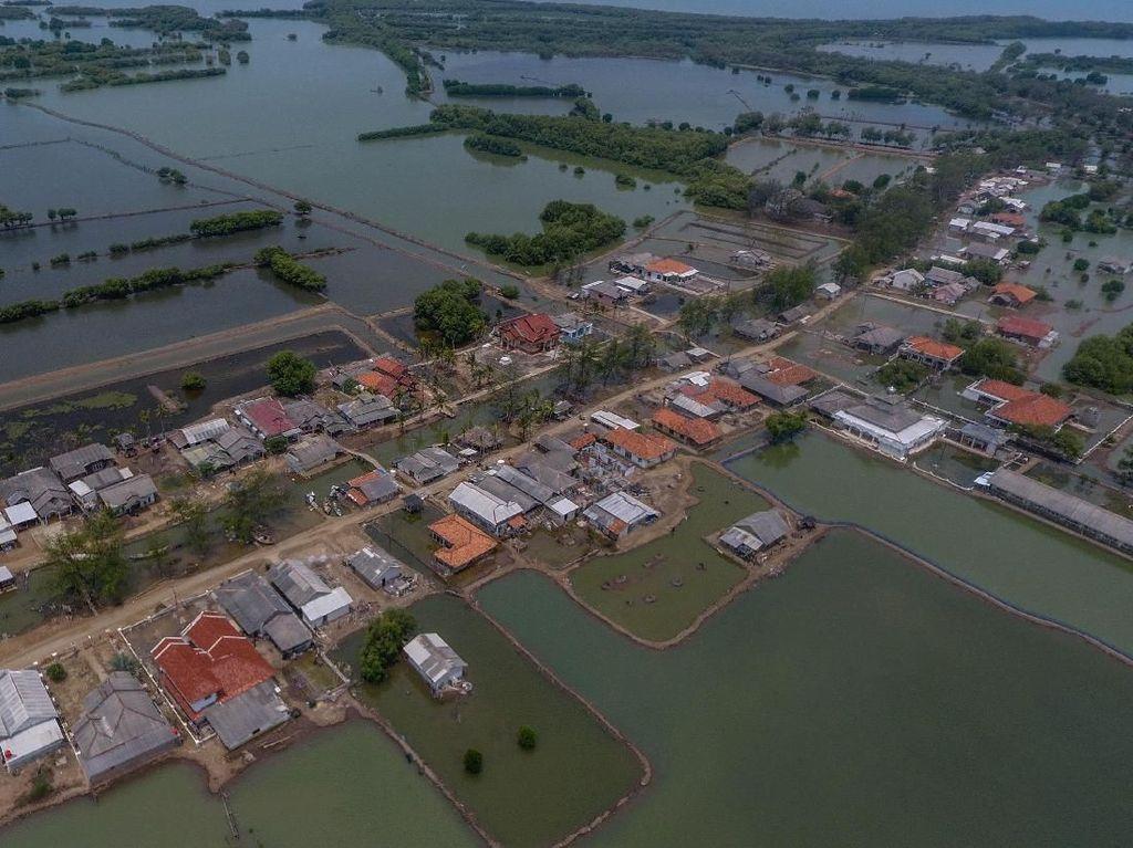 Melihat Lagi Ancaman Abrasi di Utara Bekasi