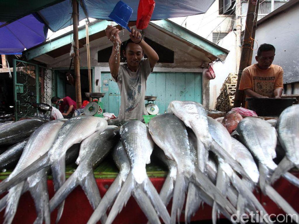 RI Mau Genjot Ekspor Ikan, Ini Syarat Pengusaha