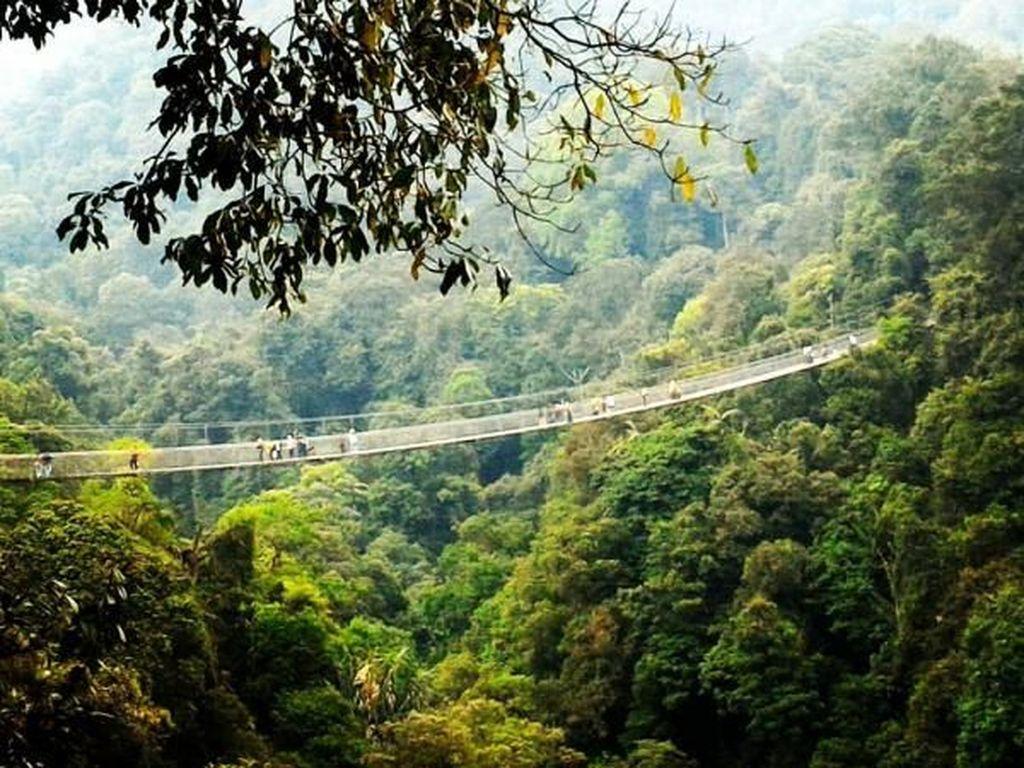 Deg-degan! Ini Jembatan Gantung Terpanjang di Indonesia