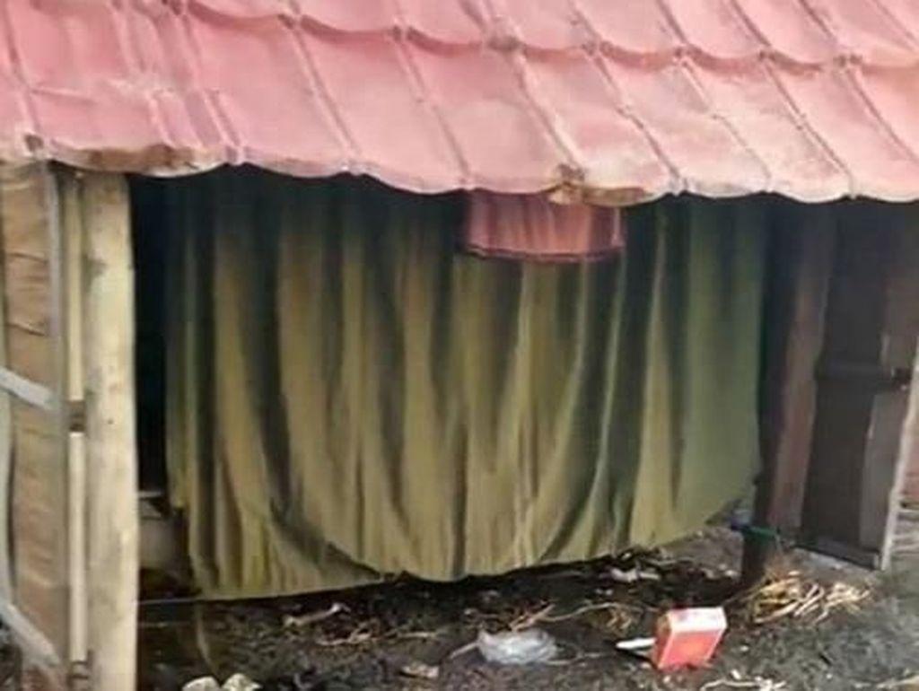 Diduga Jadi Tempat Mesum, Puluhan Gubuk di Pantai Makassar Dibongkar
