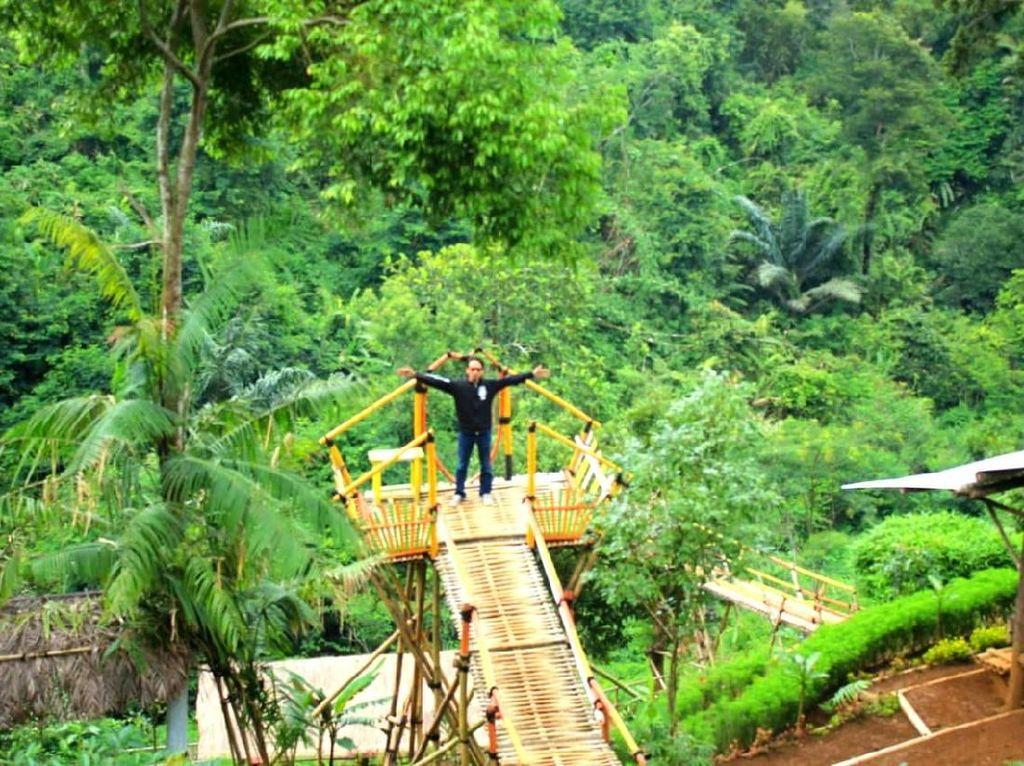 Foto: Kebun Teh nan Instagramable di Sumedang