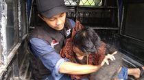 Perjuangan Relawan Potong Rambut Sukiyah yang 27 Tahun Tak Mandi