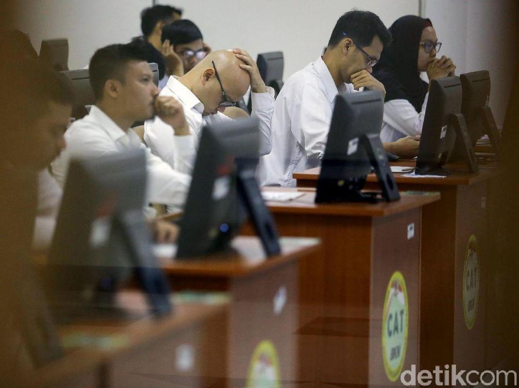 287.000 Pelamar CPNS Tak Ikut Tes, BKN: Sebagian Besar Sudah Kerja