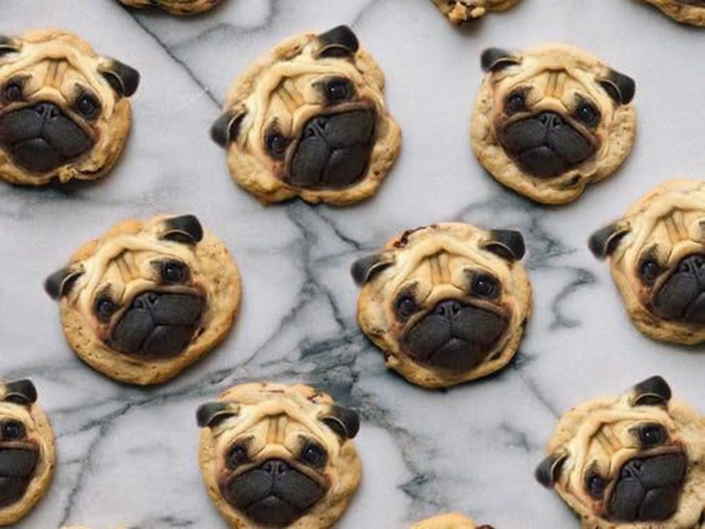 Lucu dan Bikin Gemas! 10 Makanan Ini Diedit dengan Wajah Anjing