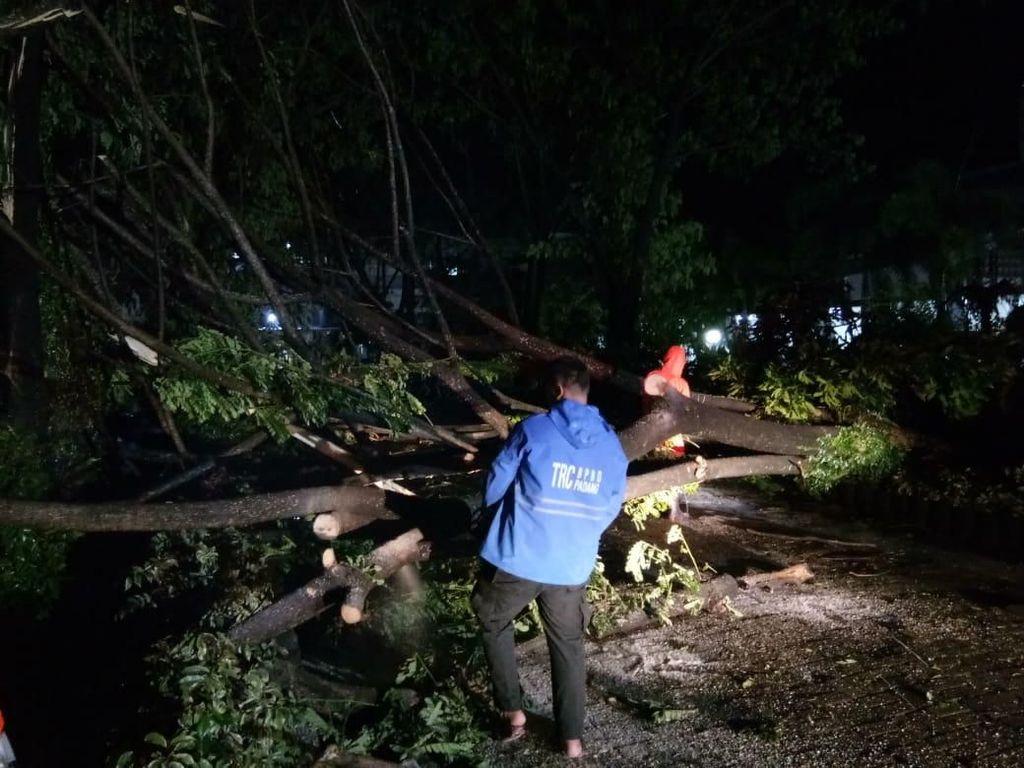 23 Pohon Tumbang di 5 Kecamatan Padang, Rumah-Warung Tertimpa