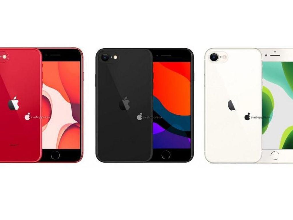Bocoran Jadwal Peluncuran iPhone Harga Murah