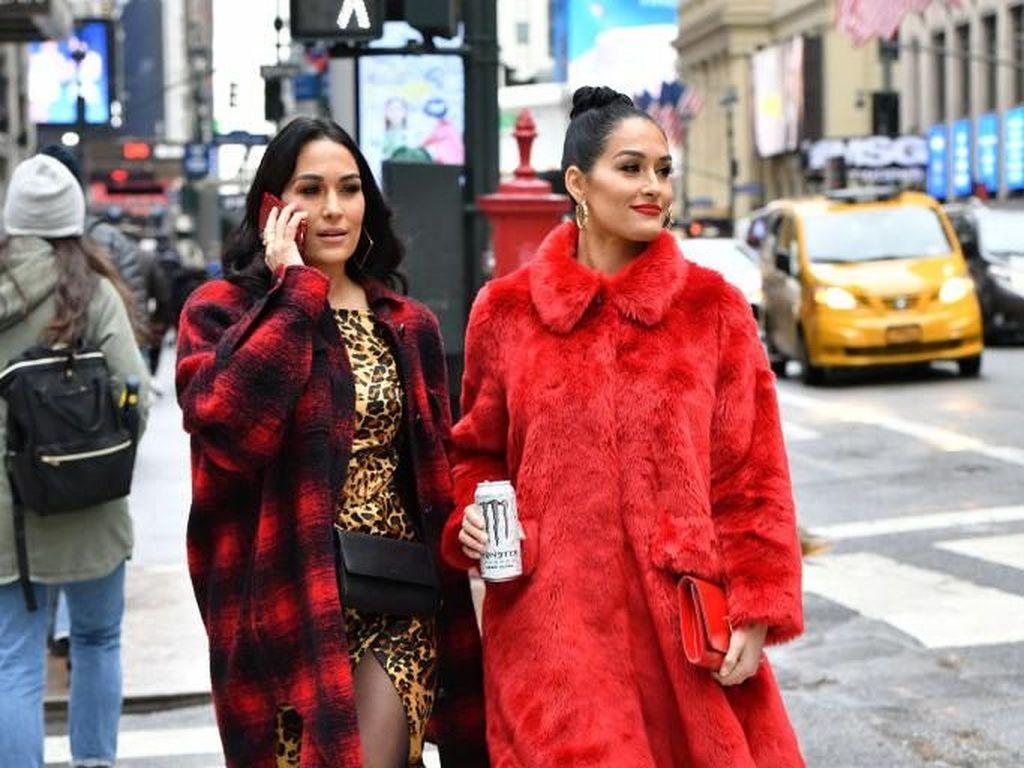 Tidak Terencana, Pegulat WWE Kembar Nikki & Brie Bella Sama-sama Hamil