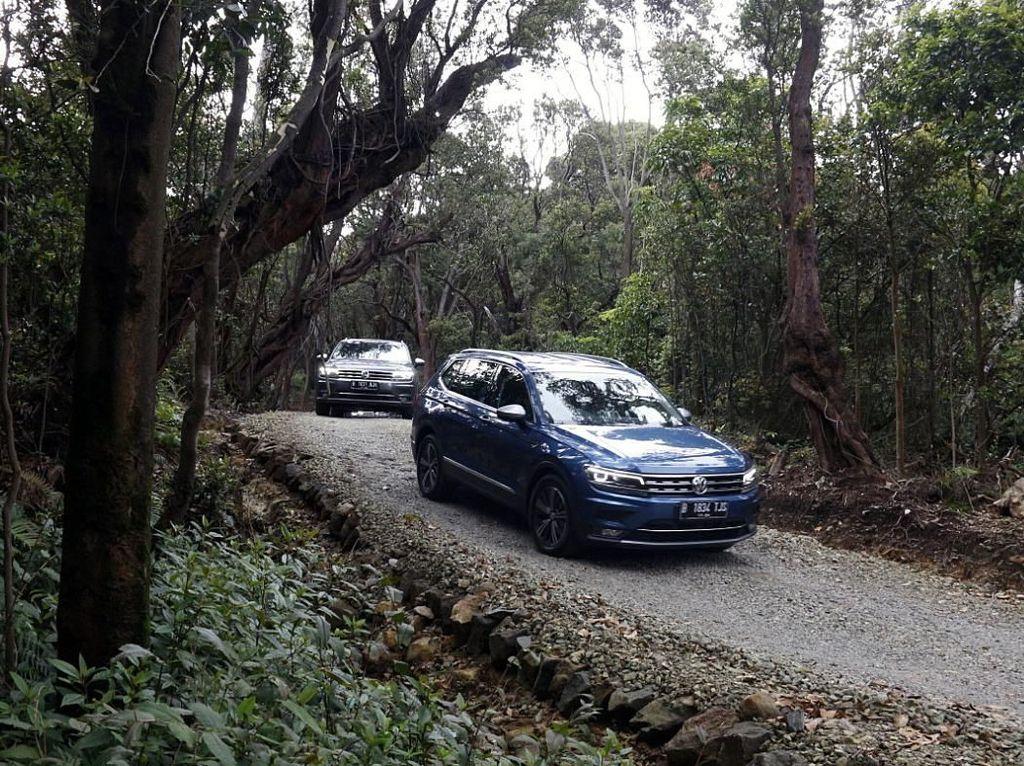 Rayu Pengguna CR-V dkk, VW Tiguan Allspace Punya Modal Apa?