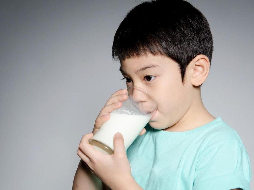 Jangan Sembarangan! Ketahui Nutrisi Sebelum Pilih Susu Formula Anak