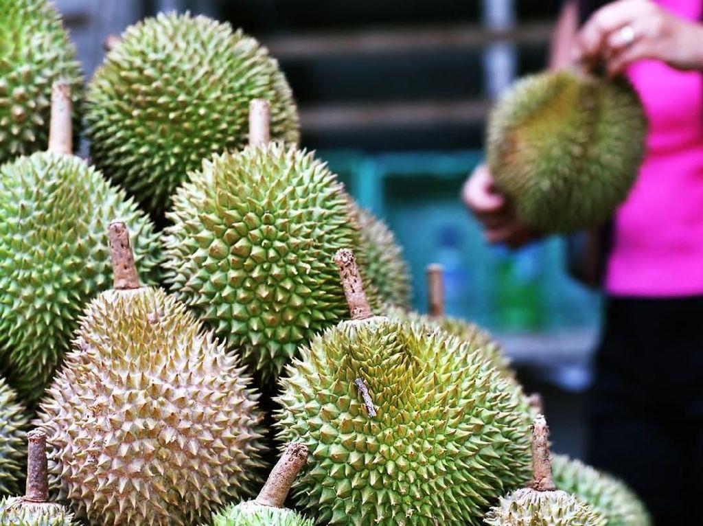 Agar Tak Salah Pilih, Ini 5 Tips Jitu Memilih Durian yang Enak