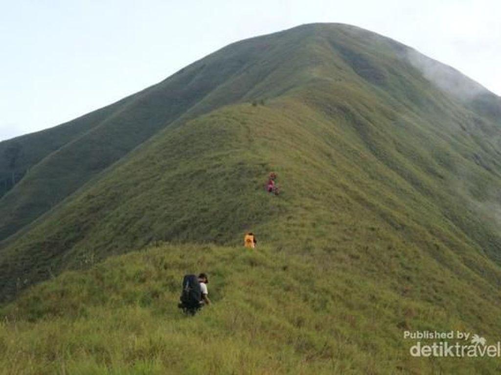 Mengenal Bukit Anak Dara, Replika Mini Rinjani di Lombok yang Terbakar