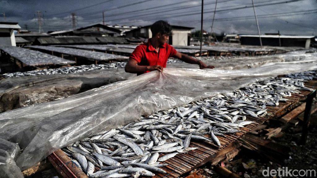 Geliat Produksi Ikan Asin yang Lesu di Musim Hujan
