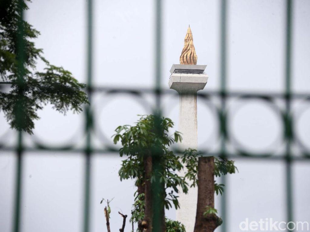 Dari 191 Pohon di Monas Ditebang Ditemukan 46 Batang, Bagaimana Sisanya?