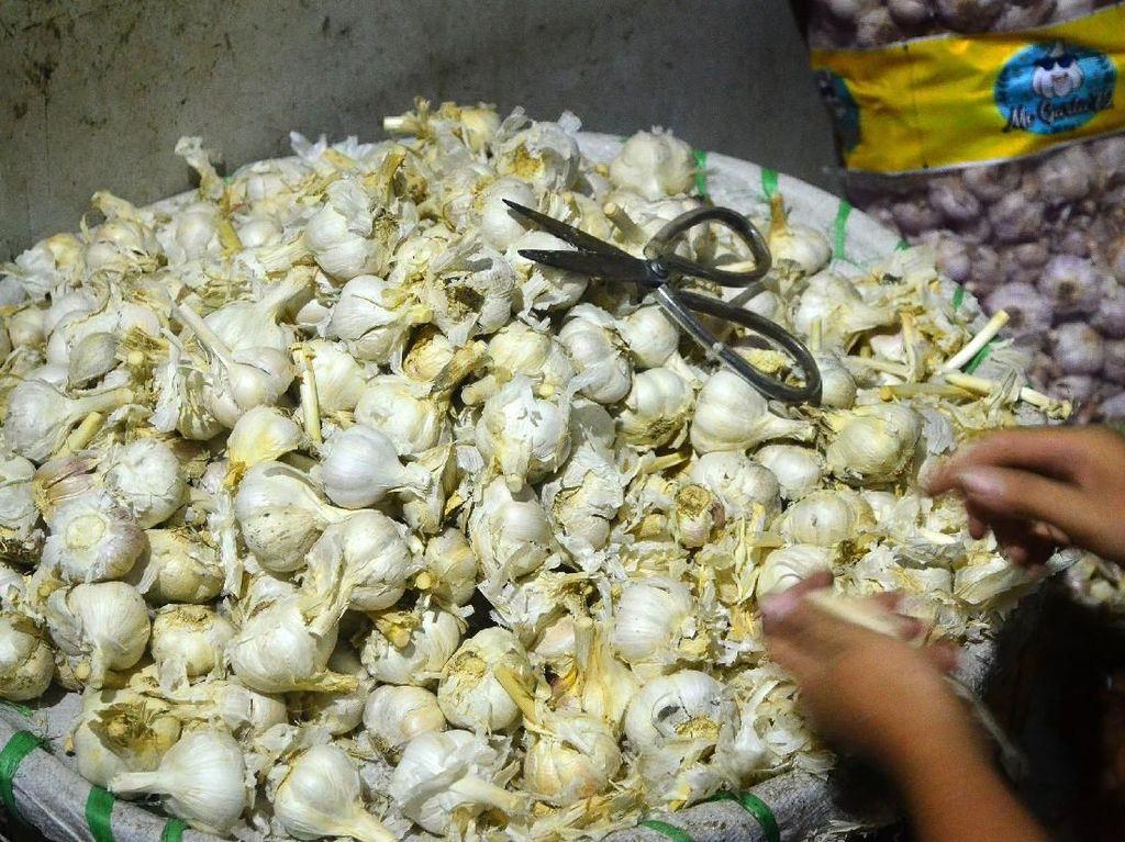 RI Impor Bawang Putih dari China 1.508 Ton di Januari