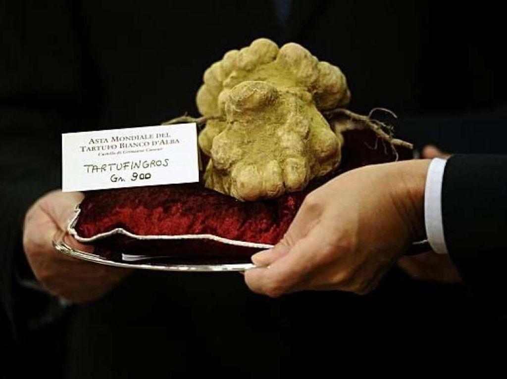 Bukan Hanya Selebriti, Orang Kaya di China Juga Doyan Jamur Truffle