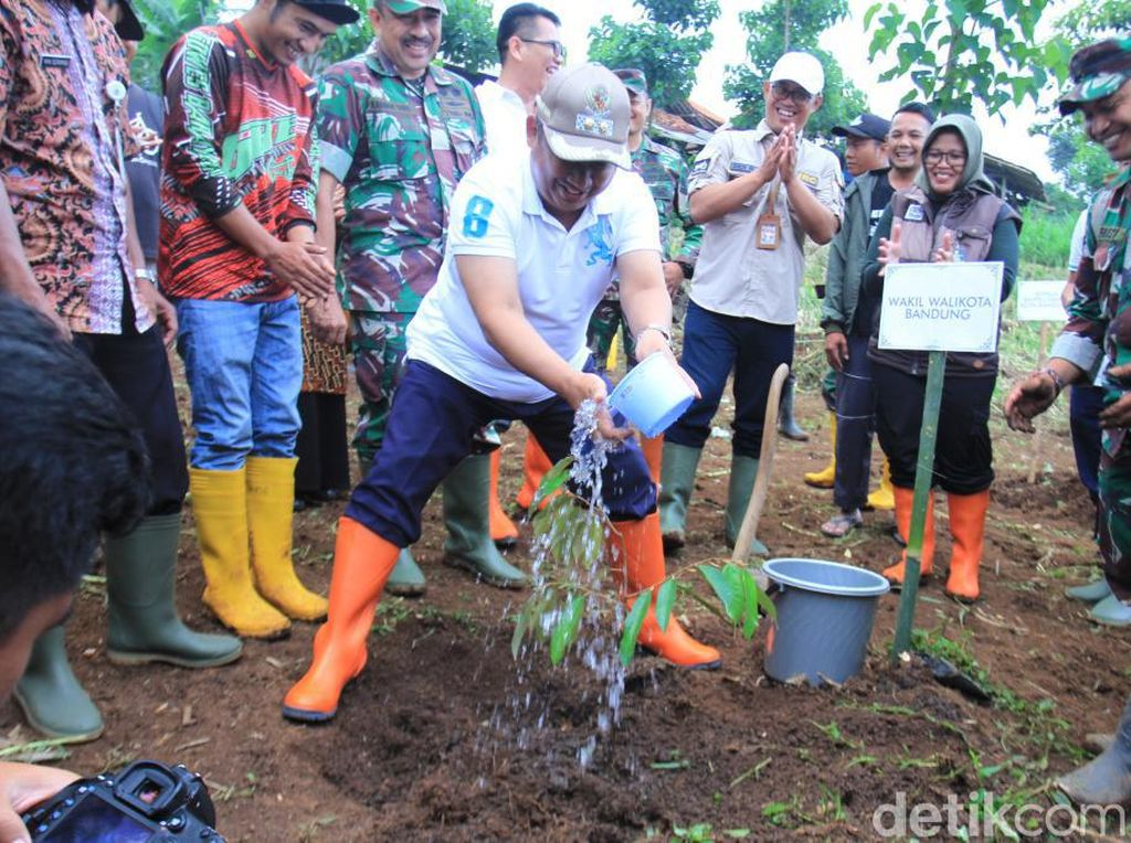 Jaga Resapan Air Kota Bandung, Ribuan Pohon Ditanam di Cibiru
