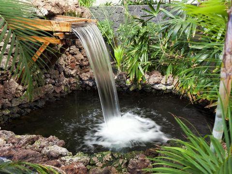 tips taman rumah minimalis dengan gemericik air yang