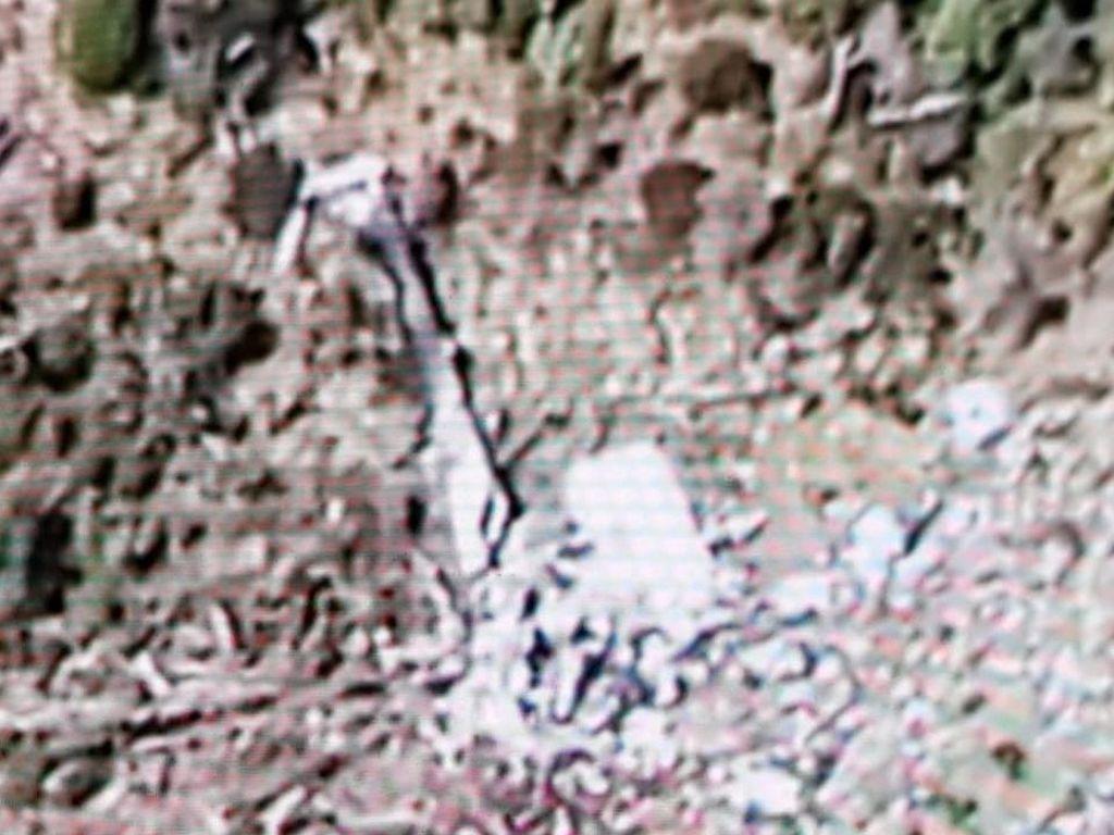 Ditemukan Sisa Puing-puing, Ini Penampakan Heli MI-17 dari Udara