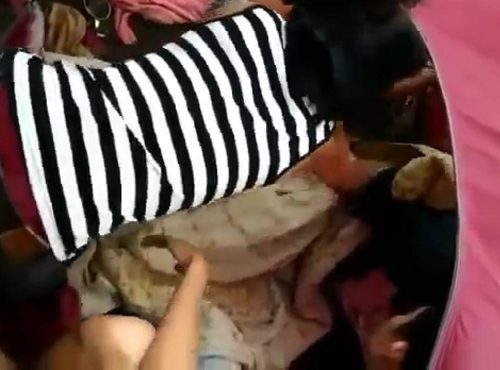 Viral Video Pendaki Mesum di TWA Sibolangit, BKSDA Sumut Angkat Bicara