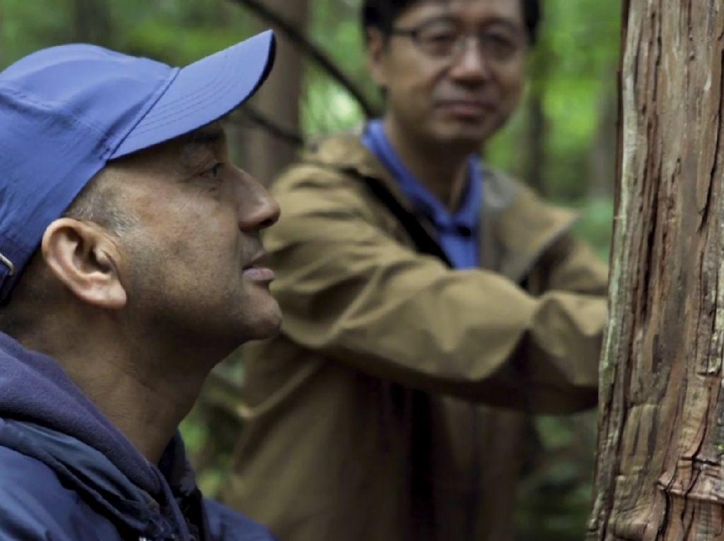 Unik! Orang Jepang yang Suka Berbicara dengan Pohon