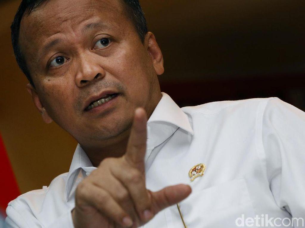 Kata Edhy Prabowo soal Orang Gerindra Dapat Izin Ekspor Benih Lobster