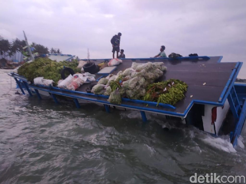 4 Hari Kandas di Laut Anyer, Kapal Muatan Pisang-Kelapa Dievakuasi