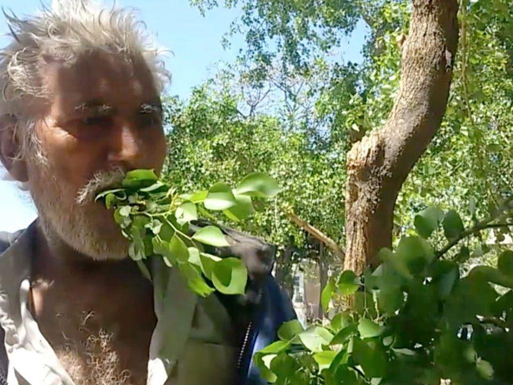 Selama 25 Tahun Pria Ini Hanya Makan Kayu dan Daun Mentah
