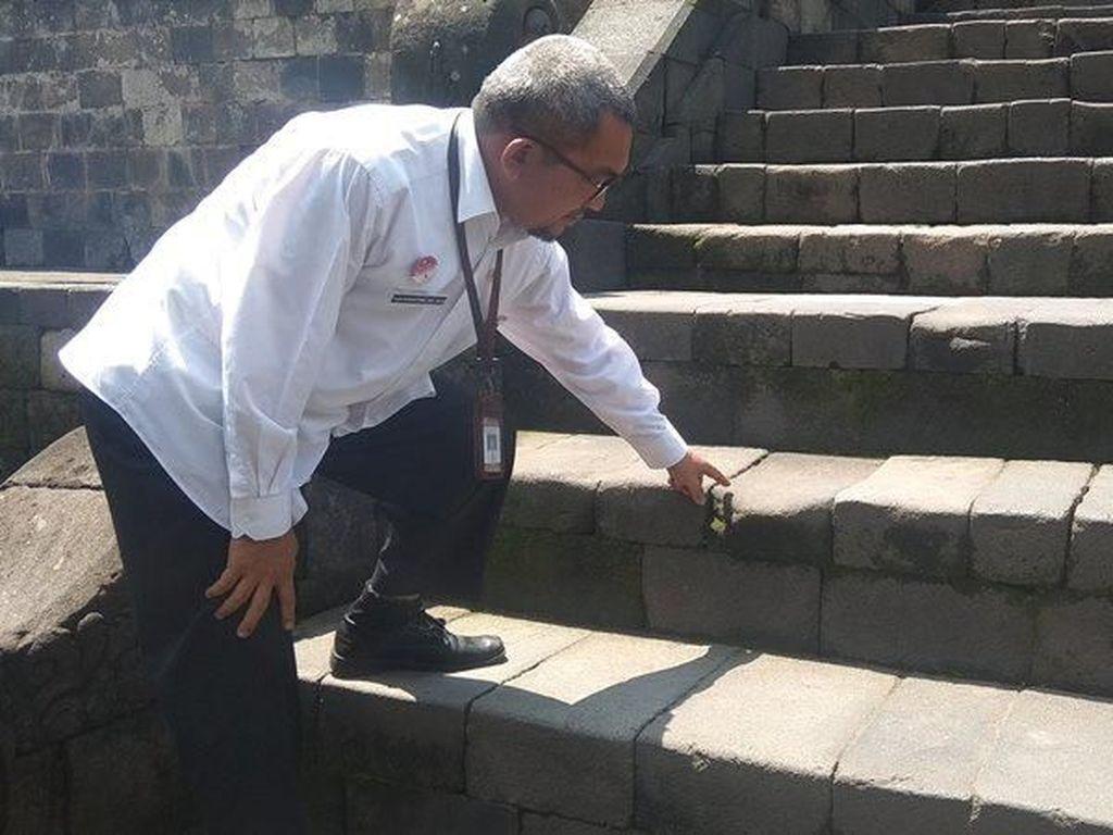 Iyuh, Jorok! Candi Borobudur Ditempeli Ribuan Permen Karet Bekas
