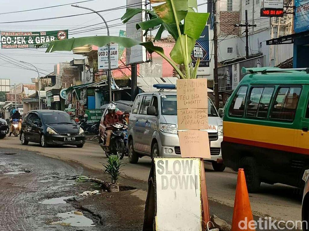 Warga Desa Cihampelas Tanam Pohon Pisang di Jalan Berlubang