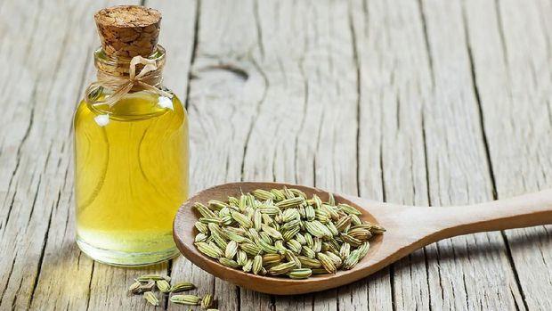 Minyak esensial fennel (adas)