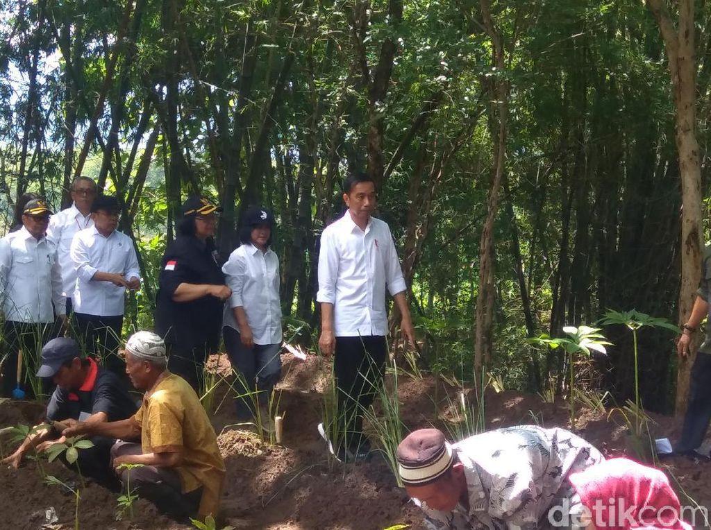 Promosikan Vetiver, Jokowi: Pengerukan Sedimen Lumpur di Waduk Itu Keliru