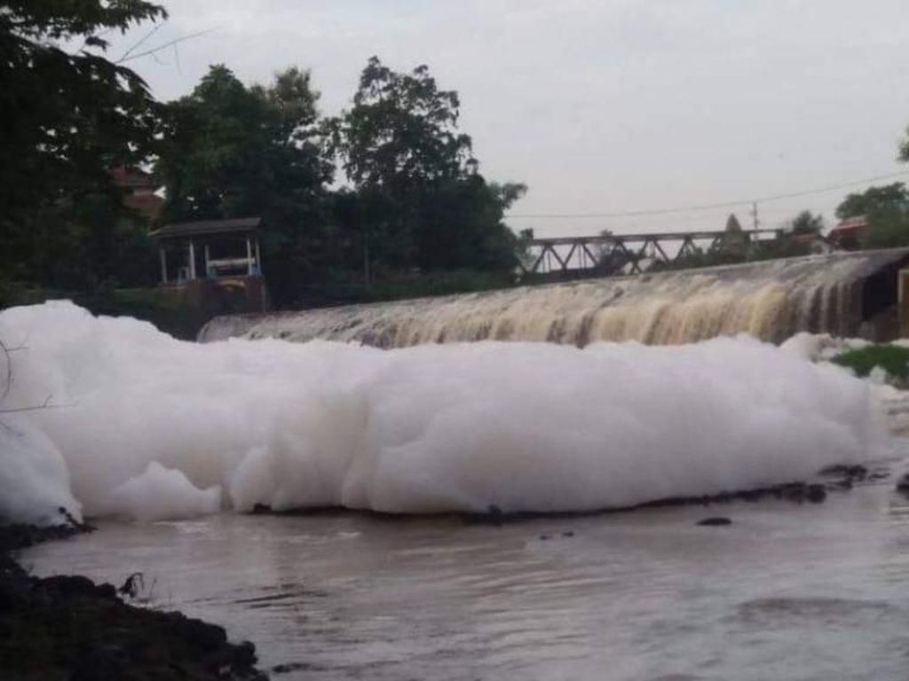 Penampakan Sungai Berbusa Bak Awan Kembali Terjadi di Pasuruan