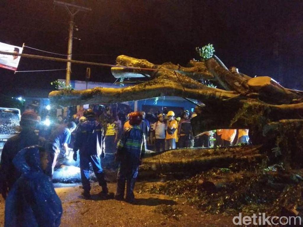 Pohon Tumbang Timpa Mobil di Bantul, Satu Orang Tewas