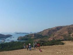 Pulau Rinca akan Dijadikan Jurassic Park Indonesia