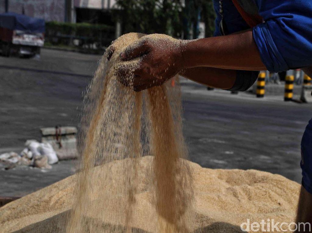 17 Distributor Gula Nakal Ditindak di Tengah Pandemi Corona