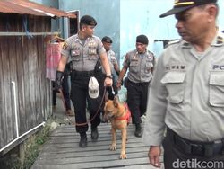 Cari Jejak Tewas Balita Yusuf, Anjing Pelacak Berulang Kali Mau Masuk Parit