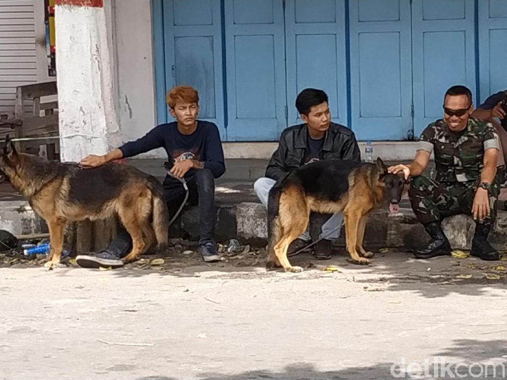 Komunitas Pecinta Anjing Blitar Turut Serta Amankan Persebaya Vs Arema