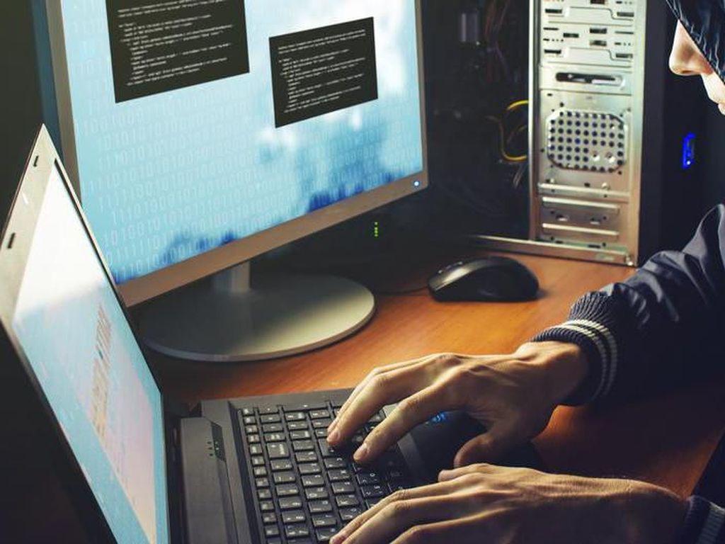 Di Tengah Pandemi Corona, Pentingnya Ahli IT Tangkis Serangan Hacker