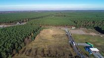 Proyek Gigapabrik Tesla di Jerman Dihentikan Pegiat Lingkungan