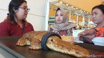 Tak Kunjung Ketemu saat Dicari, Buaya Berkalung Ban Malah Jadi Roti