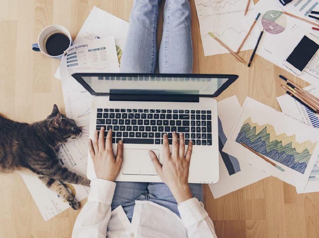 XL Gratiskan Lagi Layanan Penunjang Belajar dan Kerja dari Rumah