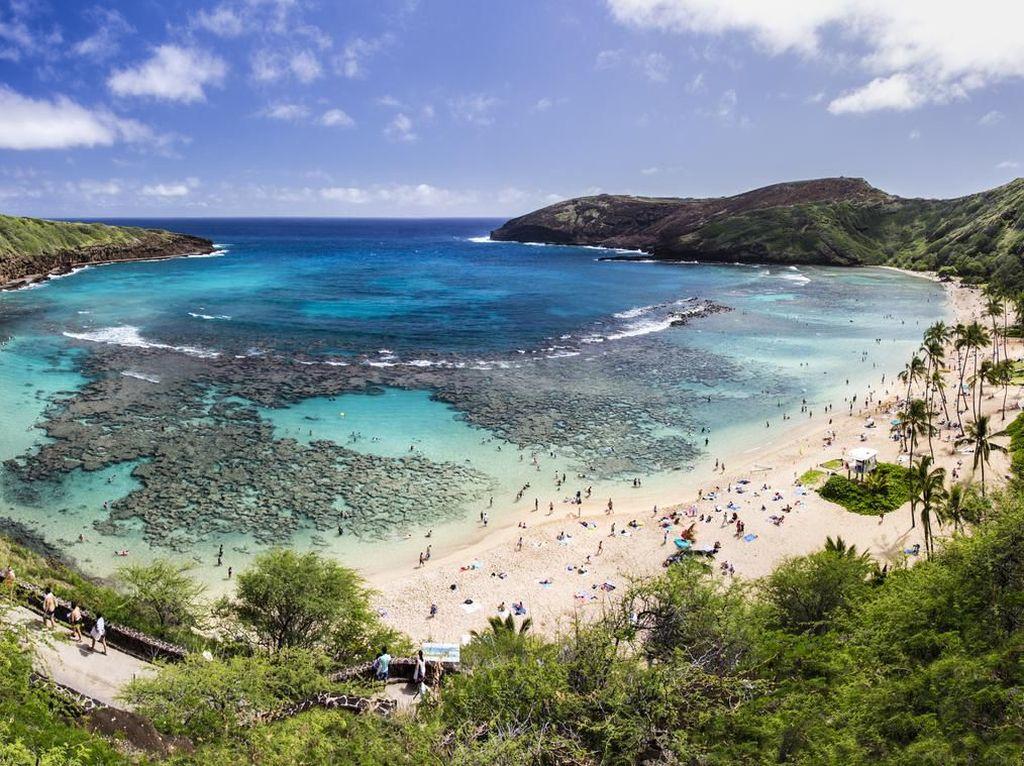 Kasus Corona Melonjak, Hawaii Tutup Pantai dan Taman di Honolulu