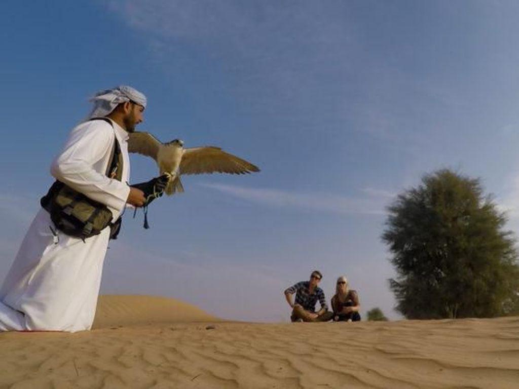 Ingin Berburu Pakai Elang Seperti Prabowo? Ini Paket Wisatanya