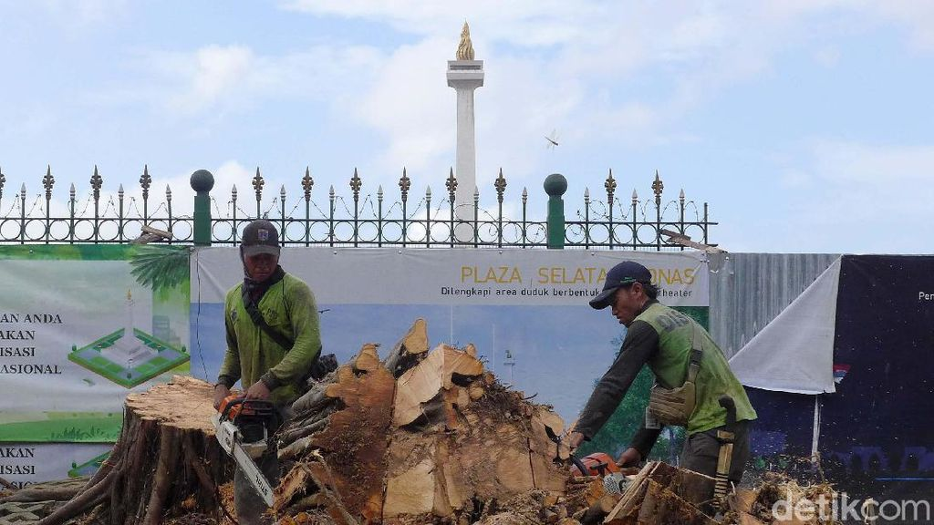 Penampakan Pohon Beringin yang Tumbang di Depan Monas
