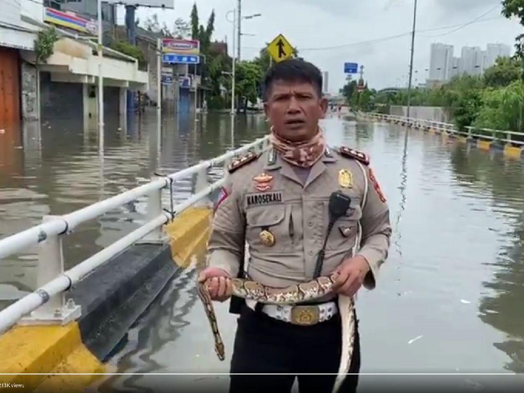 Ini Alasan Polisi Pegang Ular Saat Laporkan Banjir Jakarta Barat