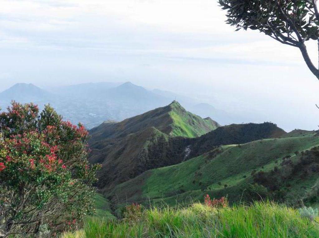 Jalur Pendakian Gunung Merbabu Ditutup karena Virus Corona