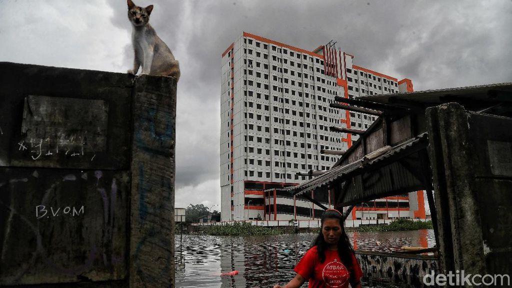 Potret Warga Korban Banjir di Semper Jakut Menanti Bantuan