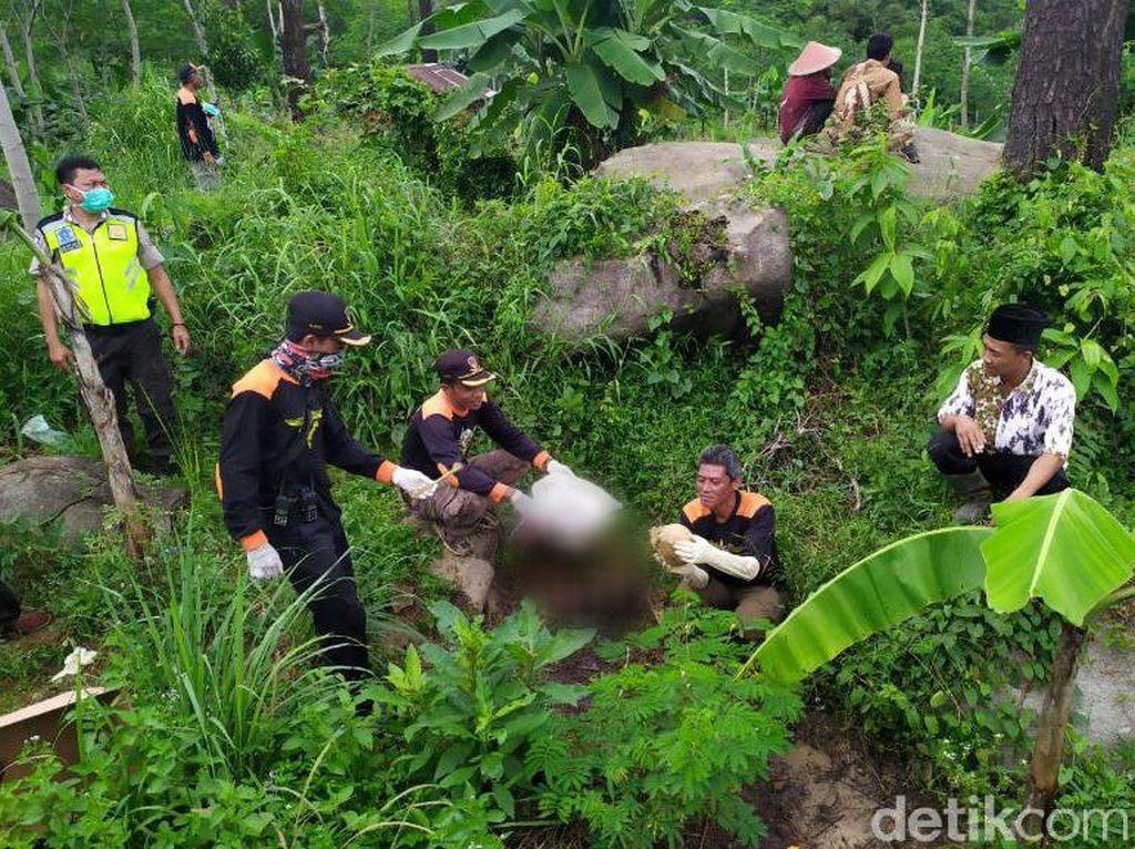 Kronologi Penemuan Kerangka Wanita Berserakan di Hutan Pinus Pemalang