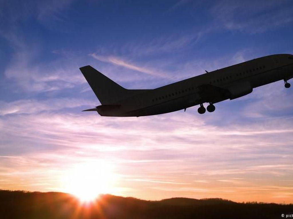 Penerbangan Butuh Waktu Lama untuk Normal, 50% Maskapai Akan Bangkrut
